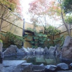 Отель Sansou Tanaka Хидзи бассейн фото 2