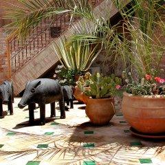 Отель Riad Aladdin Марокко, Марракеш - отзывы, цены и фото номеров - забронировать отель Riad Aladdin онлайн фото 5