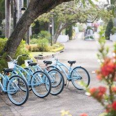 Отель Half Moon Ямайка, Монтего-Бей - отзывы, цены и фото номеров - забронировать отель Half Moon онлайн фото 11