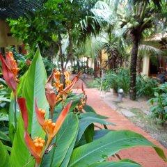 Отель Freebeach Resort развлечения
