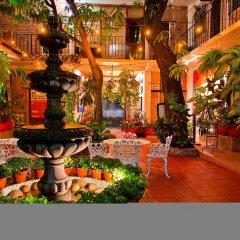 Отель Posada De Roger Пуэрто-Вальярта фото 7