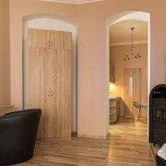 Отель Libušina Apartments Чехия, Карловы Вары - отзывы, цены и фото номеров - забронировать отель Libušina Apartments онлайн удобства в номере фото 2