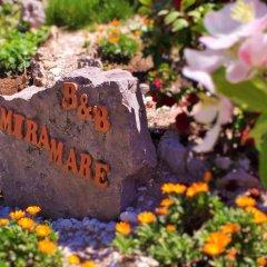 Отель B&B Miramare Италия, Аджерола - отзывы, цены и фото номеров - забронировать отель B&B Miramare онлайн фото 6