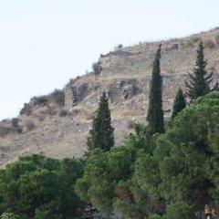 Les Pergamon Hotel Турция, Дикили - отзывы, цены и фото номеров - забронировать отель Les Pergamon Hotel онлайн фото 3