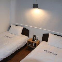 Отель Petercat Hotel Insadong Южная Корея, Сеул - отзывы, цены и фото номеров - забронировать отель Petercat Hotel Insadong онлайн комната для гостей фото 5