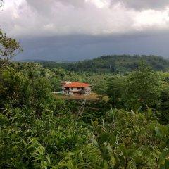 Отель Niyagama House Шри-Ланка, Галле - отзывы, цены и фото номеров - забронировать отель Niyagama House онлайн фото 7