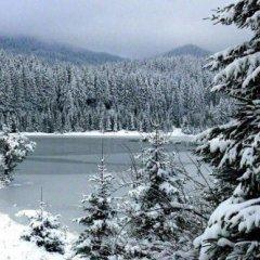 Отель Mountain Lake Hotel Болгария, Чепеларе - отзывы, цены и фото номеров - забронировать отель Mountain Lake Hotel онлайн фото 4