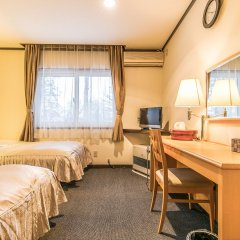 Petit Hotel Enchante Хакуба комната для гостей фото 5