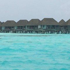 Отель Batuta Maldives Surf View Guest House Мальдивы, Северный атолл Мале - отзывы, цены и фото номеров - забронировать отель Batuta Maldives Surf View Guest House онлайн пляж