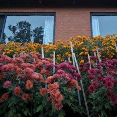 Отель Dhulikhel Mountain Resort Непал, Дхуликхел - отзывы, цены и фото номеров - забронировать отель Dhulikhel Mountain Resort онлайн фото 11