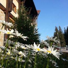 Отель Malina Болгария, Пампорово - отзывы, цены и фото номеров - забронировать отель Malina онлайн фото 4