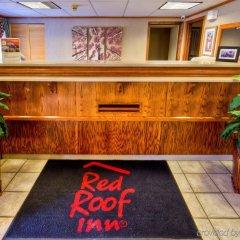 Отель Red Roof Inn Columbus - Ohio State Fairgrounds США, Колумбус - отзывы, цены и фото номеров - забронировать отель Red Roof Inn Columbus - Ohio State Fairgrounds онлайн интерьер отеля