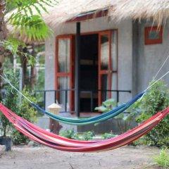 Blanco Hostel at Lanta с домашними животными