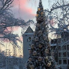 Hotel Jelgava фото 11