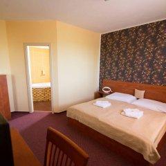 Hotel Olympionik Мельник комната для гостей
