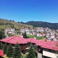 Отель Rodopi Houses Болгария, Чепеларе - отзывы, цены и фото номеров - забронировать отель Rodopi Houses онлайн