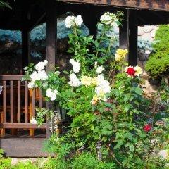 Отель Tanne Болгария, Банско - отзывы, цены и фото номеров - забронировать отель Tanne онлайн фото 13