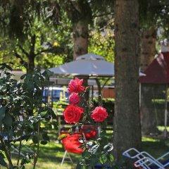 Hotel Stella Alpina Фай-делла-Паганелла развлечения