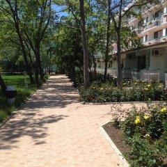 Отель ZEFIR Солнечный берег фото 6