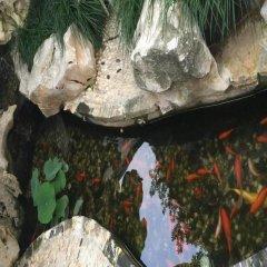 Отель Shantang Inn - Suzhou с домашними животными
