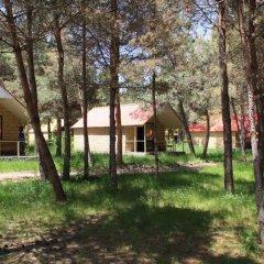 Отель Sevan lake cottage in Lavanda city Севан детские мероприятия