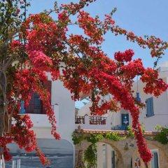 Отель Saronis Hotel Греция, Агистри - отзывы, цены и фото номеров - забронировать отель Saronis Hotel онлайн фото 6