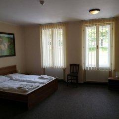 Отель U Svejku Чехия, Прага - отзывы, цены и фото номеров - забронировать отель U Svejku онлайн комната для гостей фото 4