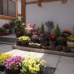 Отель Dowonjeong Healing House Южная Корея, Сеул - отзывы, цены и фото номеров - забронировать отель Dowonjeong Healing House онлайн фото 3