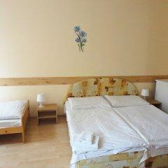 Hotel Jizera Karlovy Vary комната для гостей фото 4
