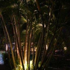 Отель Villa Tulum Hotel Италия, Рим - отзывы, цены и фото номеров - забронировать отель Villa Tulum Hotel онлайн фото 11