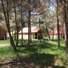 Отель Sevan Lake Cottages детские мероприятия фото 2