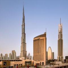 Отель Address Dubai Mall Дубай городской автобус