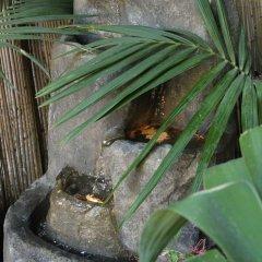 Отель Sweet Home B&B Фонтане-Бьянке с домашними животными
