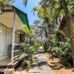 Отель Capital O 41974 Village Susegat Beach Resort Гоа фото 19