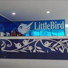 Отель Little Bird Phuket Таиланд, Пхукет - отзывы, цены и фото номеров - забронировать отель Little Bird Phuket онлайн гостиничный бар