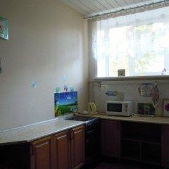Rodnichok Hostel