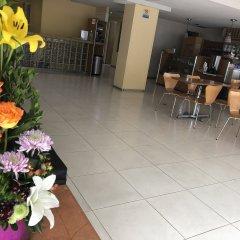 Отель Ibeurohotel Expo Мексика, Гвадалахара - отзывы, цены и фото номеров - забронировать отель Ibeurohotel Expo онлайн помещение для мероприятий