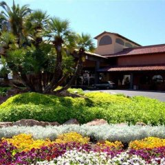 Отель Alexis Park All Suite Resort фото 3