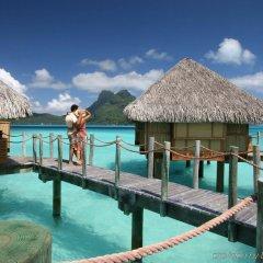 Отель Bora Bora Pearl Beach Resort and Spa Французская Полинезия, Бора-Бора - отзывы, цены и фото номеров - забронировать отель Bora Bora Pearl Beach Resort and Spa онлайн приотельная территория