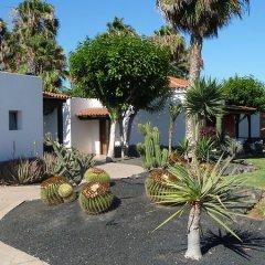 Отель Barcelo Castillo Beach Resort фото 6