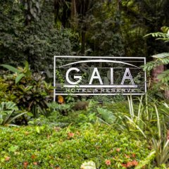 Отель Gaia Hotel And Reserve - Adults Only Коста-Рика, Кепос - отзывы, цены и фото номеров - забронировать отель Gaia Hotel And Reserve - Adults Only онлайн фото 10