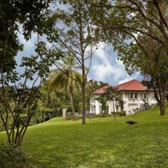 Отель Capella Singapore фото 11