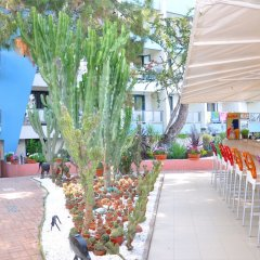 Club Hotel Rama - All Inclusive фото 8