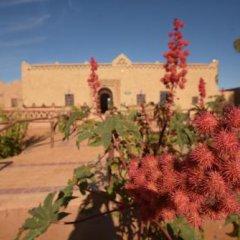 Отель Kasbah Bivouac Lahmada Марокко, Мерзуга - отзывы, цены и фото номеров - забронировать отель Kasbah Bivouac Lahmada онлайн фото 14