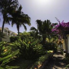 Отель Quinta Bela Sao Tiago Португалия, Фуншал - отзывы, цены и фото номеров - забронировать отель Quinta Bela Sao Tiago онлайн фото 3