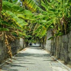 Отель Charming Holiday Lodge Мальдивы, Хулхудху (Атолл Адду) - отзывы, цены и фото номеров - забронировать отель Charming Holiday Lodge онлайн Хулхудху (Атолл Адду) приотельная территория
