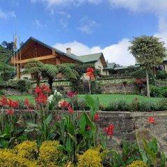 Отель Tea Bush Hotel - Nuwara Eliya Шри-Ланка, Нувара-Элия - отзывы, цены и фото номеров - забронировать отель Tea Bush Hotel - Nuwara Eliya онлайн фото 21