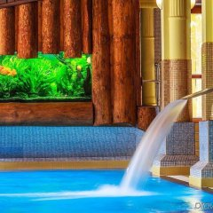 Отель Litwor Польша, Закопане - отзывы, цены и фото номеров - забронировать отель Litwor онлайн бассейн