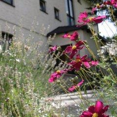 Отель Amadeus Pension фото 8