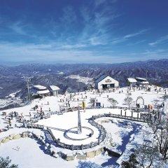 Отель Phoenix Pyeongchang Hotel Южная Корея, Пхёнчан - отзывы, цены и фото номеров - забронировать отель Phoenix Pyeongchang Hotel онлайн